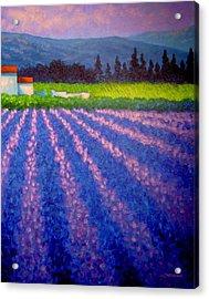 Provence Acrylic Print by John  Nolan