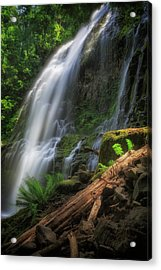 Acrylic Print featuring the photograph Proxy Falls by Cat Connor