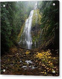 Proxy Falls In Autumn Acrylic Print