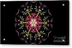Psych3 Acrylic Print