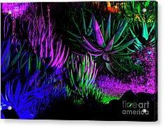 Psychedelia Acrylic Print by Kathy McClure