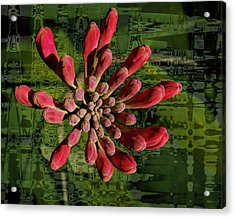 Acrylic Print featuring the photograph Psychedelic Bud by Jean Noren