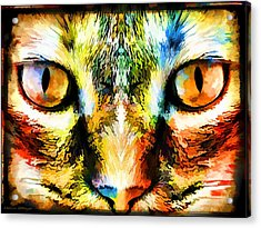Psychedelic Kitty Cat Acrylic Print