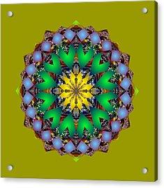 Psychedelic Mandala 003 A Acrylic Print