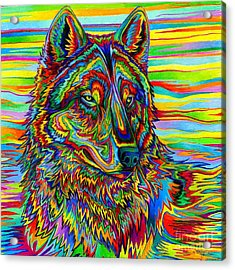 Psychedelic Wolf Acrylic Print
