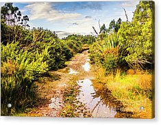 Puddles And Outback Tracks Acrylic Print by Jorgo Photography - Wall Art Gallery