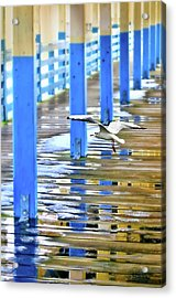 Acrylic Print featuring the photograph Puddles by Diana Angstadt