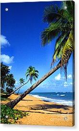 Puerto Rico North Shore Acrylic Print by Thomas R Fletcher
