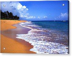 Puerto Rico Shoreline Along Pinones Acrylic Print by Thomas R Fletcher