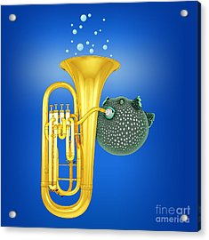 Puffer Fish Playing Tuba Acrylic Print