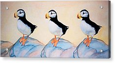 Puffin Rock Acrylic Print