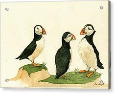 Puffins Acrylic Print by Juan  Bosco