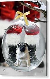 Pug And Santa Acrylic Print
