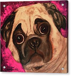 Pug - Chloe Acrylic Print