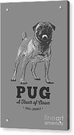 Pug Dog Touch Of Clown T-shirt Acrylic Print by Edward Fielding