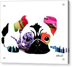 Pug Pup Acrylic Print by Cindy Edwards