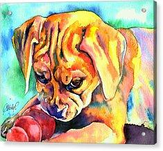 Puggle Playtime Acrylic Print by Christy  Freeman