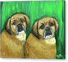 Puggles Bruno And Louie Acrylic Print