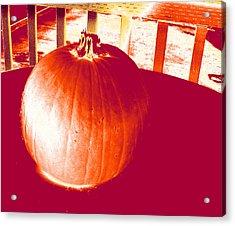 Pumpkin #1 Acrylic Print
