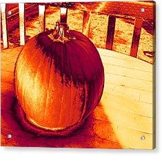 Pumpkin #3 Acrylic Print
