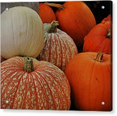 Pumpkin Colors Acrylic Print by JAMART Photography