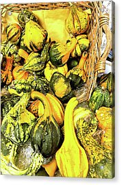 Pumpkin Family Acrylic Print