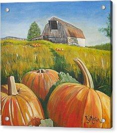Pumpkin Harvest  Acrylic Print