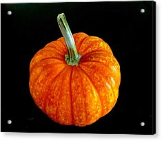 Pumpkin Acrylic Print by Russell Keating
