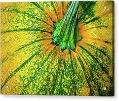 Pumpkin Season Acrylic Print by JAMART Photography
