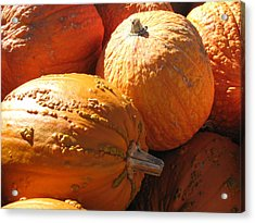 Acrylic Print featuring the photograph Pumpkin Shadows by Cindy Plutnicki