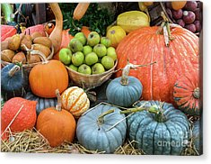 Pumpkins And Fruit Acrylic Print by Tim Gainey