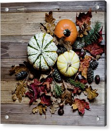 Acrylic Print featuring the photograph Pumpkins And Leaves by Rebecca Cozart