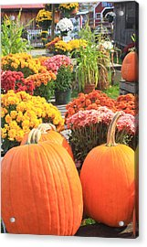 Pumpkins And Mums In Farmstand Acrylic Print