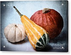 Pumpkins Acrylic Print by Angela Doelling AD DESIGN Photo and PhotoArt