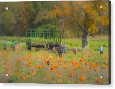 Pumpkins At Langwater Farm Acrylic Print