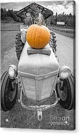 Pumpkins For Sale Vermont Acrylic Print by Edward Fielding