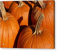 Pumpkins Acrylic Print by Michael Thomas