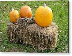 Pumpkins On A Haystack Acrylic Print