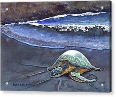 Punaluu Honu Beach Nap Acrylic Print by Michele Ross