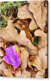 Punk Leaf Acrylic Print by Jeff Kolker