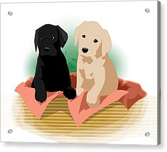 Puppy Basket Acrylic Print