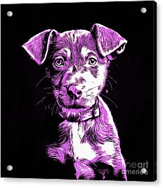 Puppy Dog Graphic Novel Drawing IIi Acrylic Print