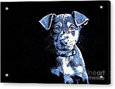 Puppy Dog Graphic Novel  Acrylic Print by Edward Fielding