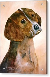 Puppy Acrylic Print by Larry Hamilton