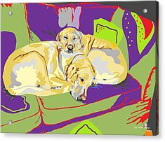 Puppy Pile Of Two Acrylic Print by Su Humphrey