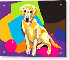 Puppy Princess And The Pillows Acrylic Print by Su Humphrey