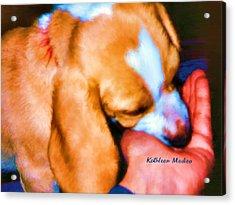 Puppy Time Acrylic Print