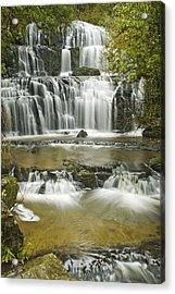 Purakanui Falls Acrylic Print by Andrea Cadwallader