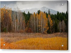 Purcell Gold Acrylic Print by Idaho Scenic Images Linda Lantzy