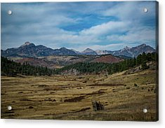 Pure Isolation Acrylic Print
